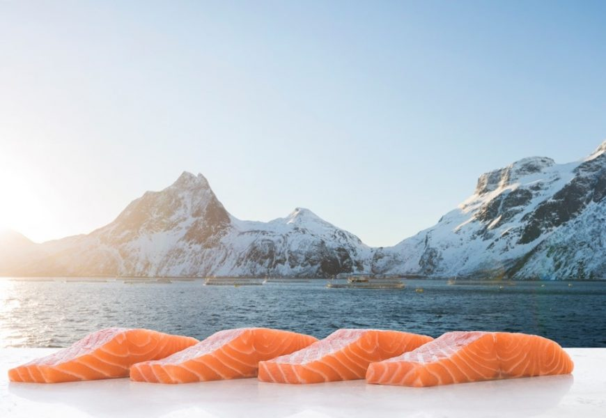 Frozens Fare Well as Total Norwegian Seafood Export Value Falls in May